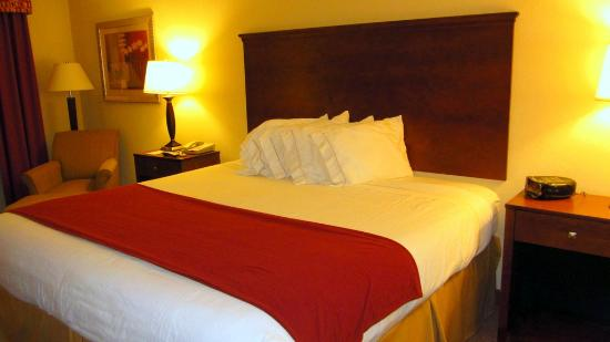 Holiday Inn Express Hotel & Suites Quincy I-10: Nice room