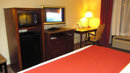 Holiday Inn Express Hotel & Suites Quincy I-10: Another view of the room