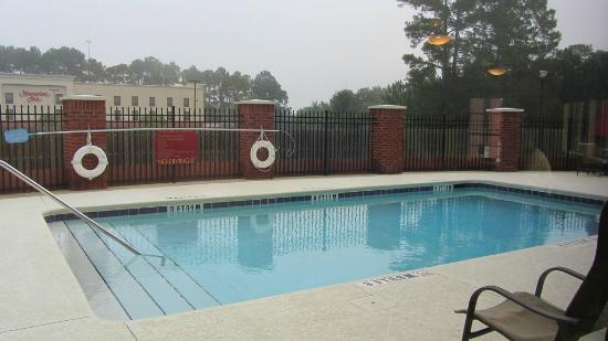Holiday Inn Express Hotel & Suites Quincy I-10: Outdoor pool