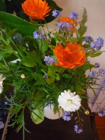 Fresh flowers greeted us on arrival