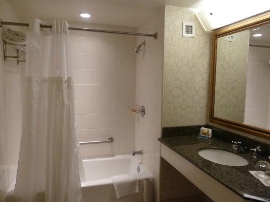 Manchester Grand Hyatt San Go Bathroom