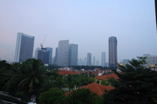 Aliwal Park Hotel : View to downtown