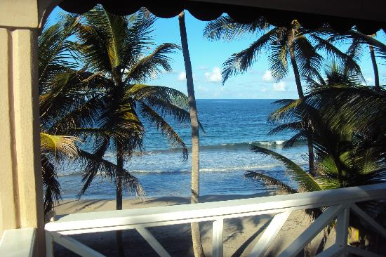Petite Anse Hotel Grenada: View from Palms