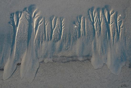 Normandie Oceanfront Motor Inn: Trees of the Sea patterns in the sand from outgoing tide on the Beach
