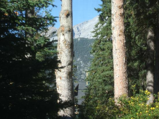 A Banff Boutique Inn - Pension Tannenhof: Zoomed in view from the room