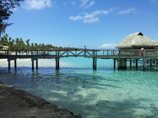 Sofitel Moorea Ia Ora Beach Resort: Ponte para os overwater bungalows
