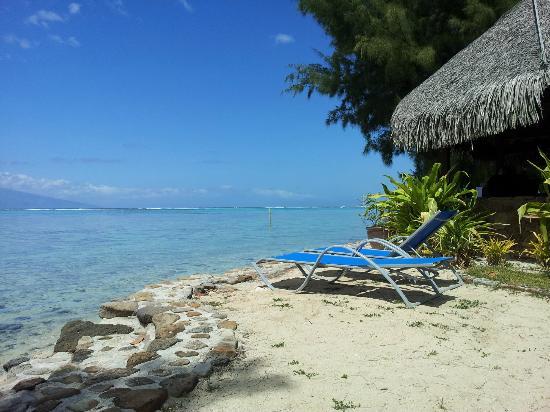 Sofitel Moorea Ia Ora Beach Resort: A lagoa