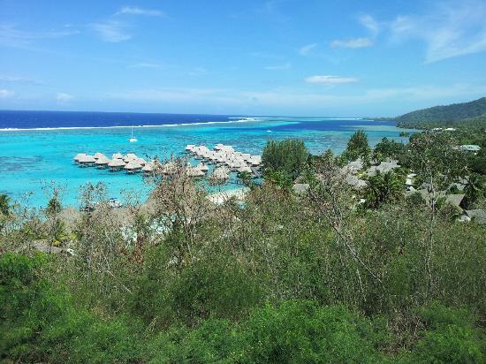 Sofitel Moorea Ia Ora Beach Resort: O hotel visto de um mirante