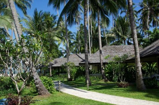 Nikki Beach Resort Koh Samui: hotel bungalows