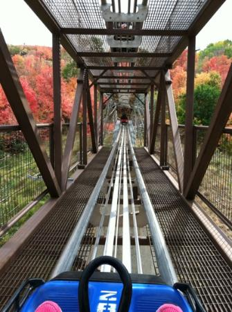 Alpine Coaster : going up!