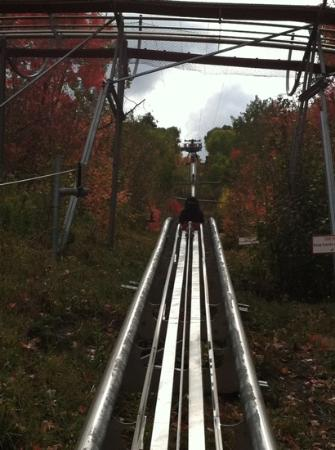 Alpine Coaster: Up!