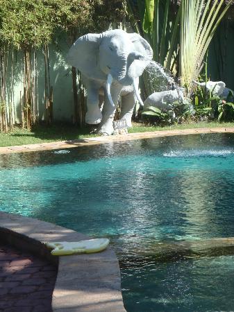 Pondok Bambu: Pool 