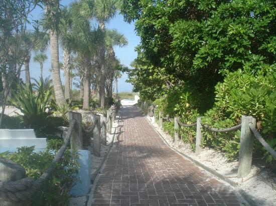 Tropical Beach Resorts: The walkway to get to our private beach