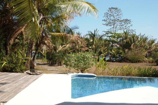 Boca Sombrero: pool at one of the houses