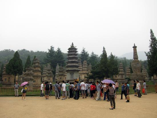 Shaolin Temple: This was nice...