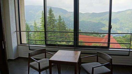 Hyatt Regency Hakone Resort and Spa: Our sunroom