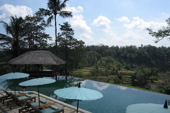 Amandari: The pool 