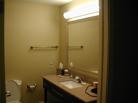 La Quinta Inn & Suites Columbus - Edinburgh: Vanity