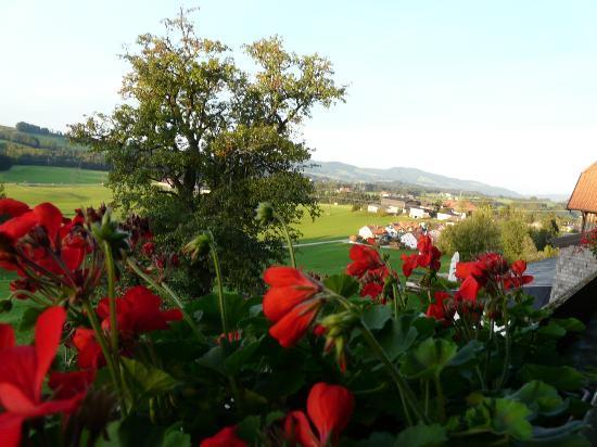 Gasthof Am Riedl: Magnifique vue sur la vallée prise de notre balcon