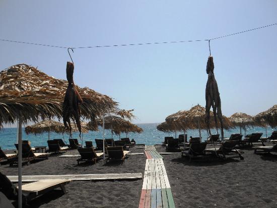Afros: spiaggia a disposizione clienti (con polpi appesi al sole)