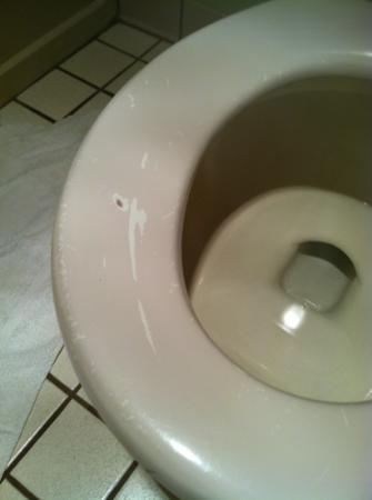 Baymont Inn & Suites Cortez: chipped paint on toilet seat