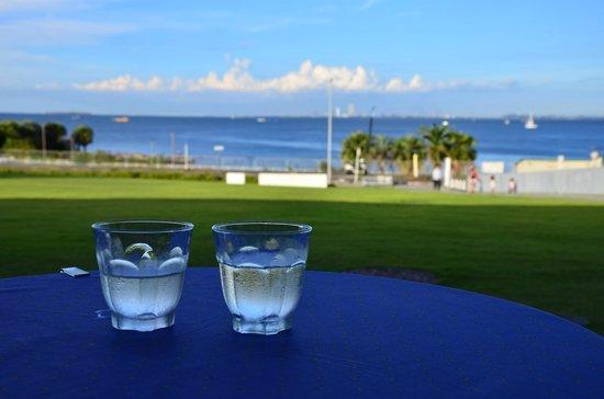 Yokosuka, Japão: 併設のレストランのテラス席。芝生は裸足で入れます。目の前は海。プレジャーボートや漁船の他、自衛隊の灰色の船も通るのが横須賀らしい。