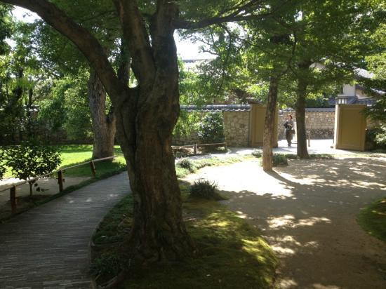 Kosetsu Museum of Art : 美術館の庭