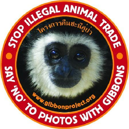 "Gibbon Rehabilitation Project: Say ""NO""to take photo with wild animals"