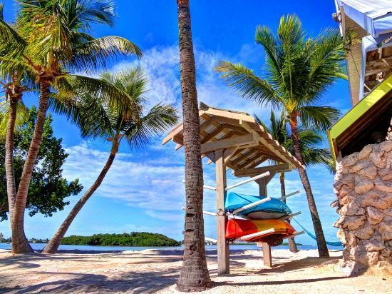 Ibis Bay Beach Resort: Kayaks