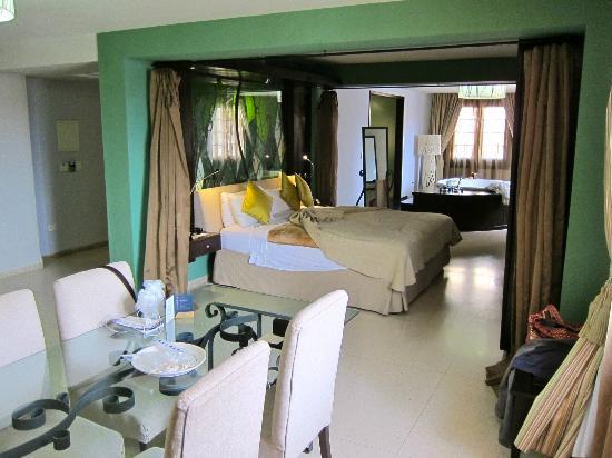 Hotel Palacio del Marques de San Felipe y Santiago de Bejucal: Suite