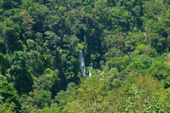 Sendang Gile and Tiu Kelep Waterfall: The waterfall view from the restaurant