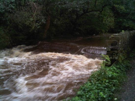 Jumbles Country Park: Weir in flood