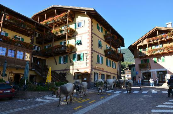 Varena, Italia: desmontegada...