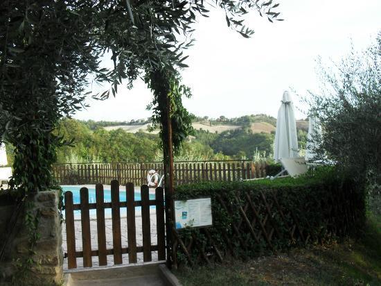 Agriturismo Le Dolci Colline: piscina