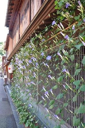 金沢市, 石川県, ひがし茶屋街