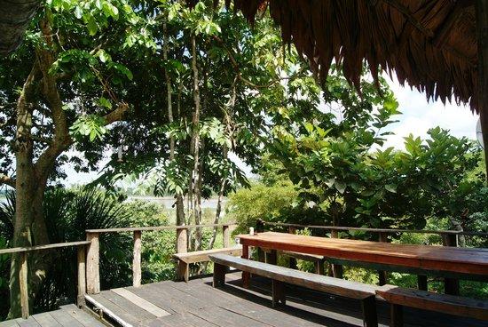 Reserva Natural Palmari : Main area