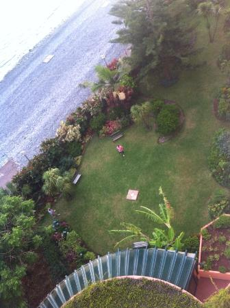 Pestana Ocean Bay Hotel: the garden ( view from balcony )