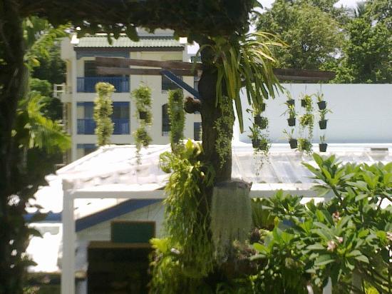Kantary Bay, Phuket: balcony
