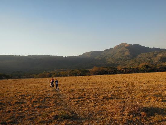 Old Joe's Kaia: Wanderung durch das Schoemanskloof Tal