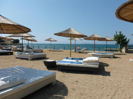 Apollonium Spa & Beach: Private sunbathing @ 15TL