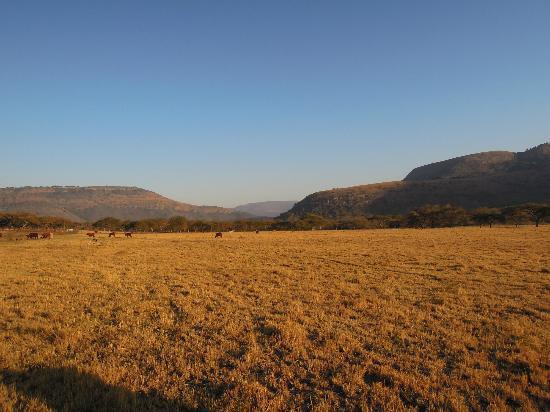Old Joe's Kaia: Traumhaft schöne Landschaft umgibt Old Joe's Kaja