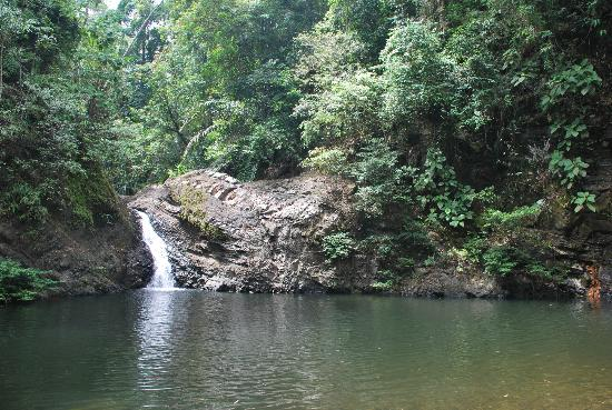 Tabin Wildlife Resort: waterfall in the forest
