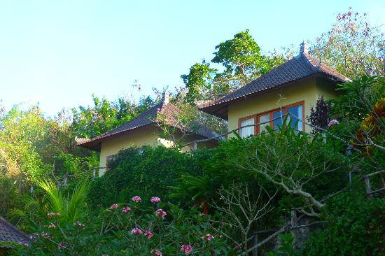 Lembongan Cliff Villas: Our & kids villas-
