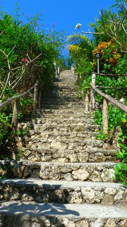 Lembongan Cliff Villas: the stairs to our villa at the very top - worth it