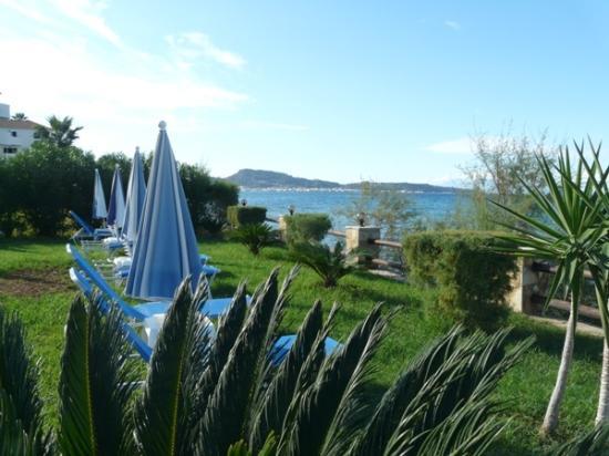 Anemona Beach Hotel : Hotel garden