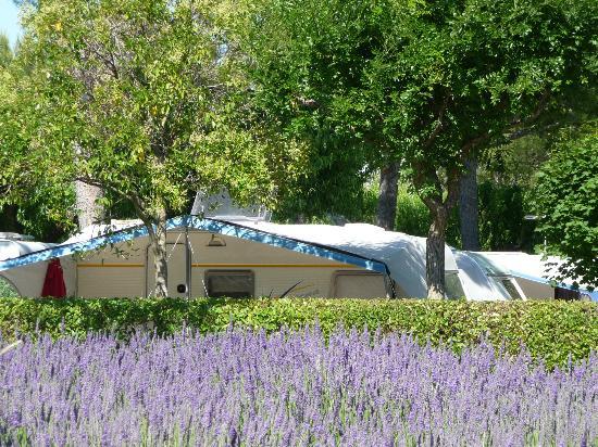Camping Monplaisir : Camping