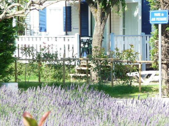 Camping Monplaisir : Mobil Home