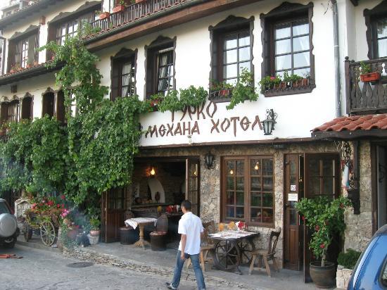 Hotel Gurko : the hotel