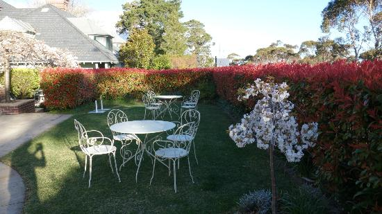 Lilianfels Resort & Spa - Blue Mountains: Garden outside of the Lounge