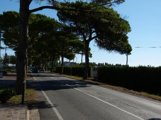 Ca' Berton Village: road from campsite